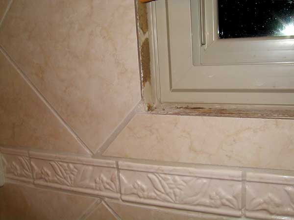 Original How To Install Wall Tile In Bathroom  HowToSpecialist  How To Build